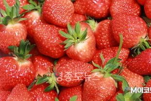 과일과 채소는 뇌 건강에 도움이 될 수 있을까?